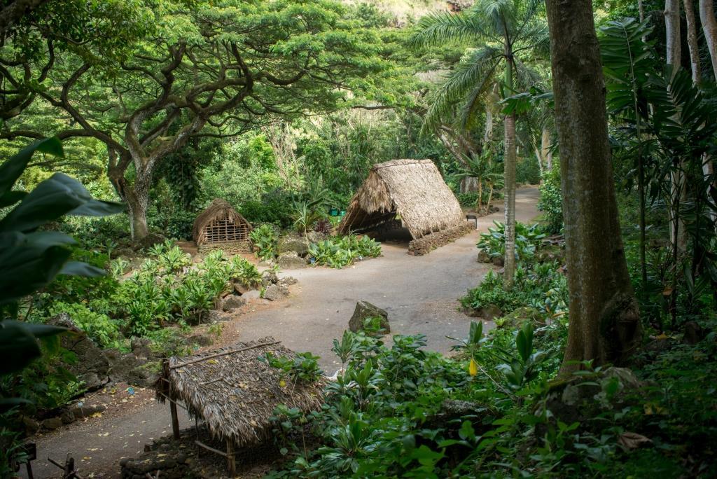4 Reasons To Visit The Oahu 39 S Most Beautiful Waterfall At Waimea Valley Waimea Valley