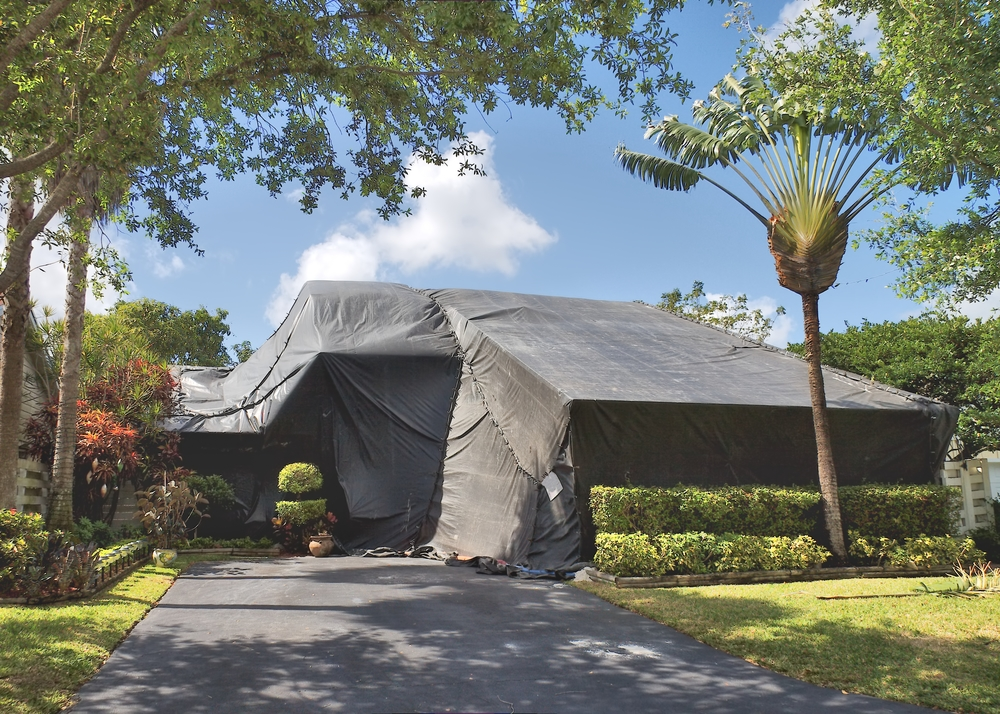 termite tenting & What You Should Know About Termite Tenting - Aloha Termite Kauai ...