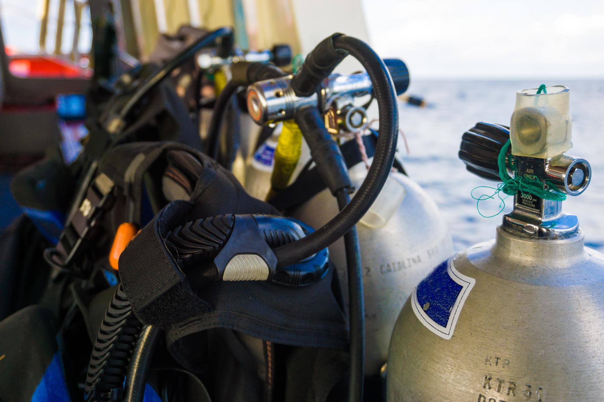 scuba tours