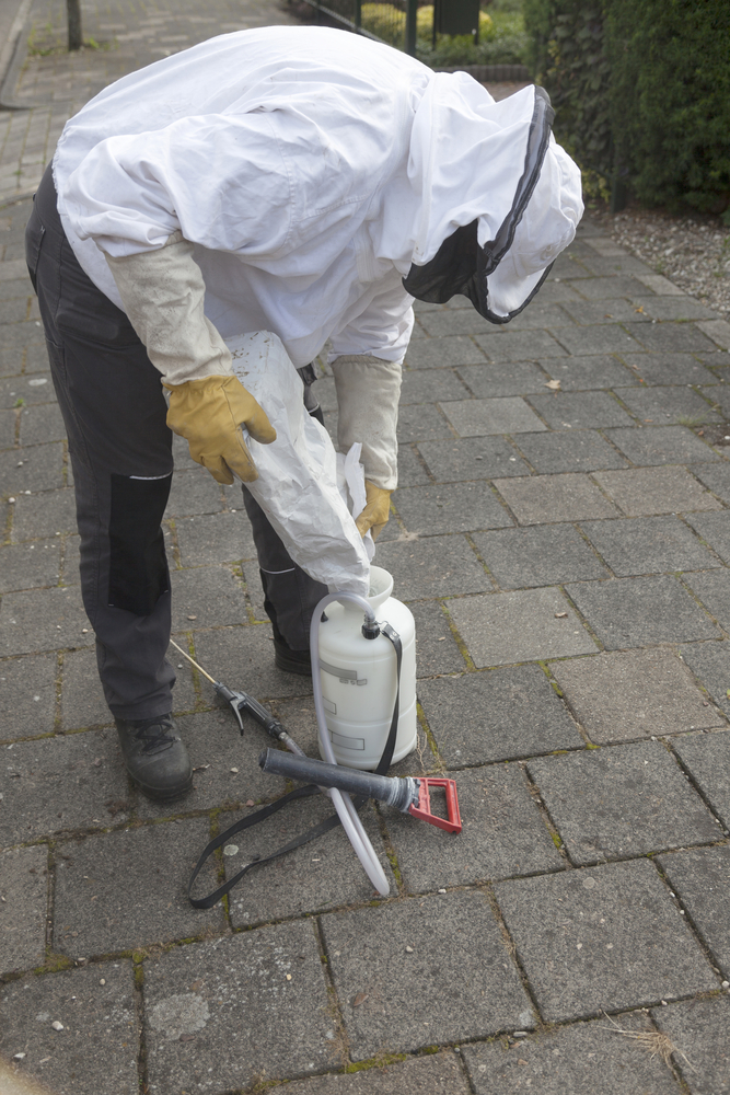 Finding the Recommended Best Pest Control Birmingham