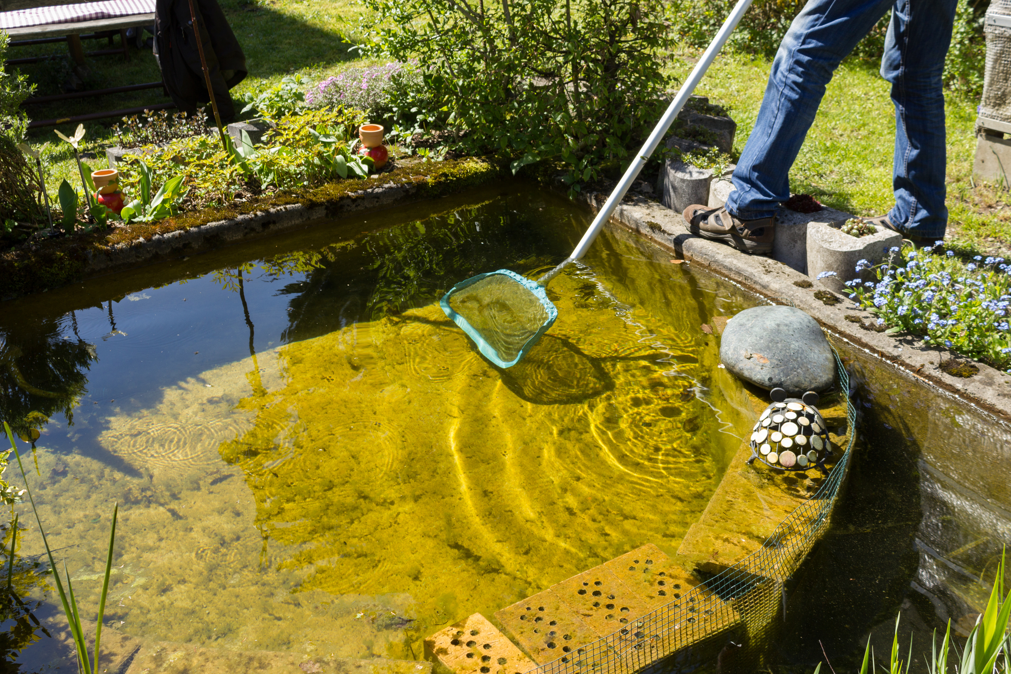 4cfe2a5c3ce 3 Tips for Preparing Your Garden Pond for Spring - Arselli's ...