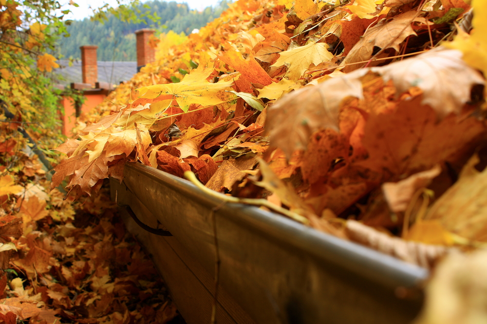 3 Reasons Fall Gutter Cleaning Is Necessary Before Winter