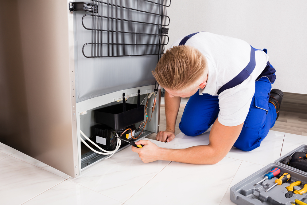 Appliance repair what those strange noises might really for How to tell if garbage disposal motor is burned out