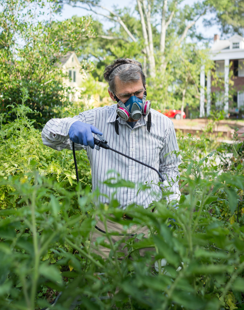 4 Signs You Need Pest Control for Your Lawn - Valley Green ...