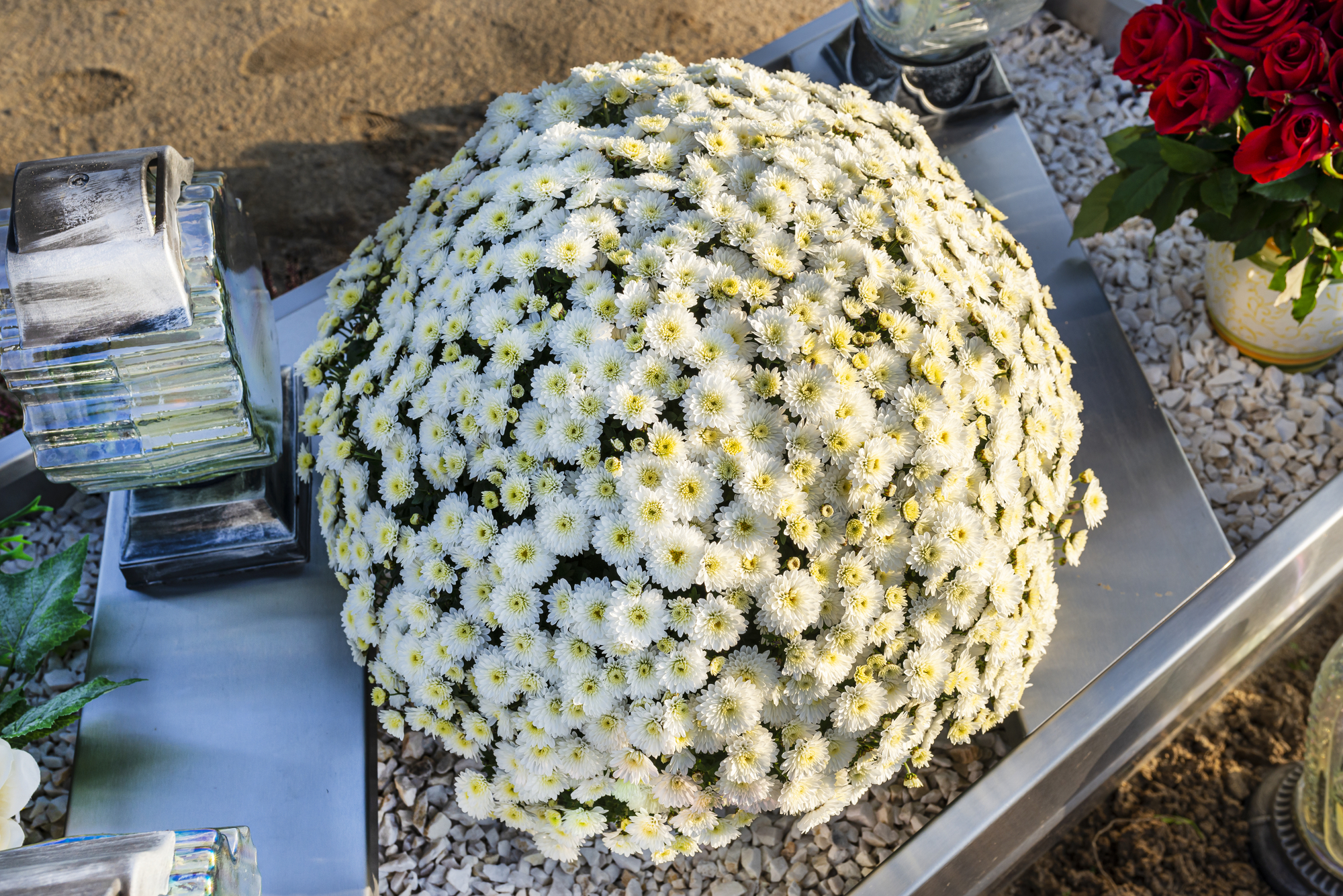 Your Guide To Long Lasting Flowers For Graves Mcgee Monument Co