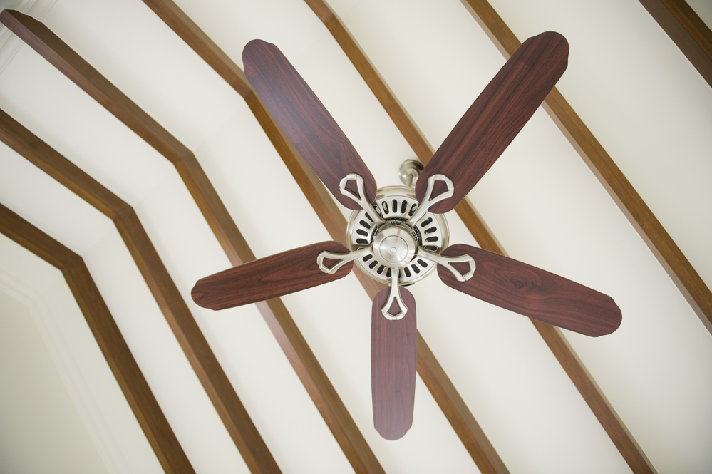 What to look for when buying ceiling fans a r home center if you are concerned about efficiency choose a fan with three blades fans with fewer blades are lighter so they require less energy to operate mozeypictures Gallery
