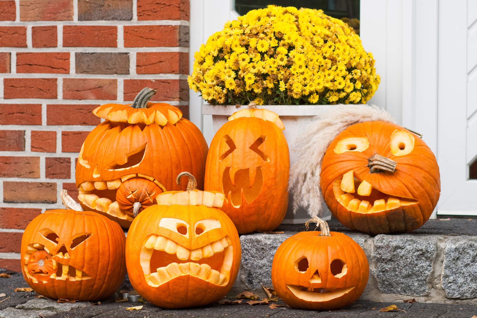 4 Home & Garden Essentials for Your Halloween Party