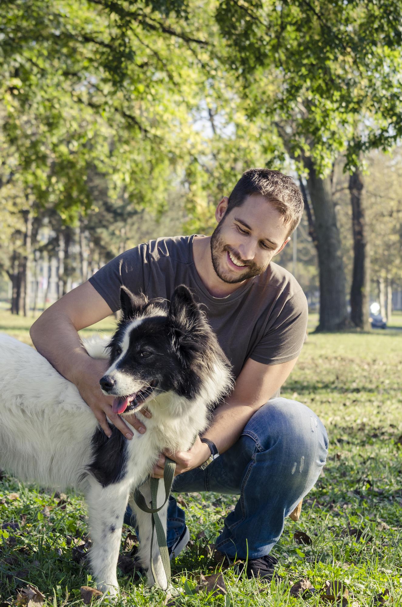 dog vaccination