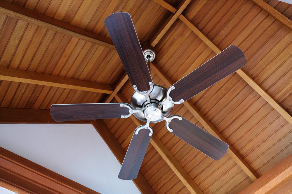Electrical Contractor Installing A Ceiling Fan Can Take