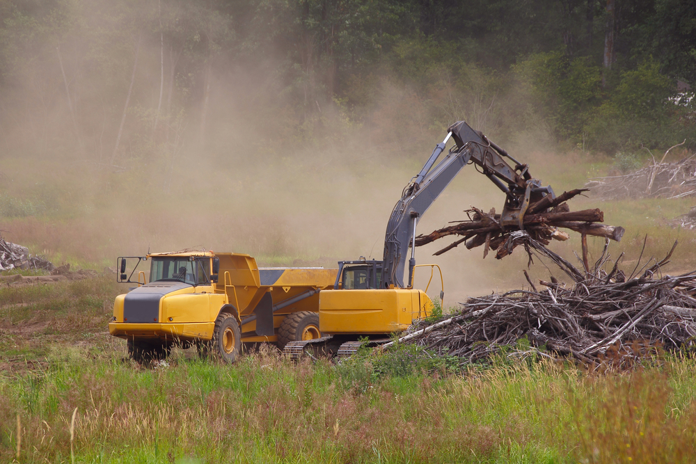 land clearing company