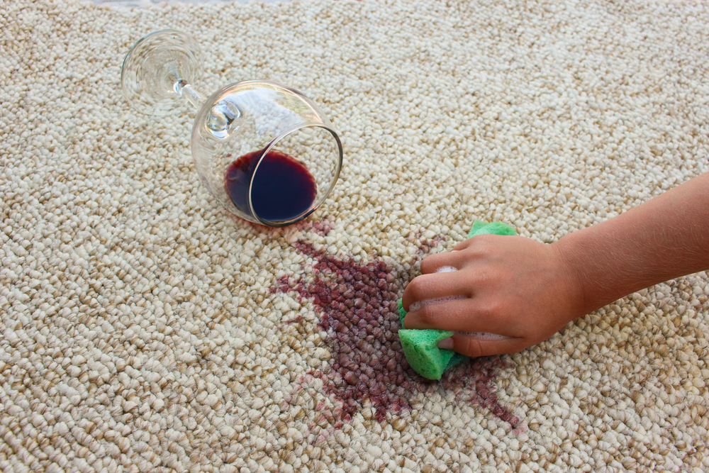 remove urine smell out of carpet