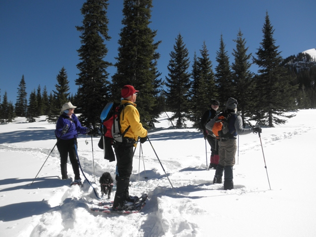 Stay 2 nights get the 3rd night free at fireside cabins for Fireside cabins pagosa