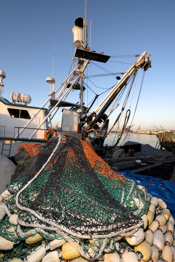 Honolulu fish market leads the way in following for Fishing supplies honolulu