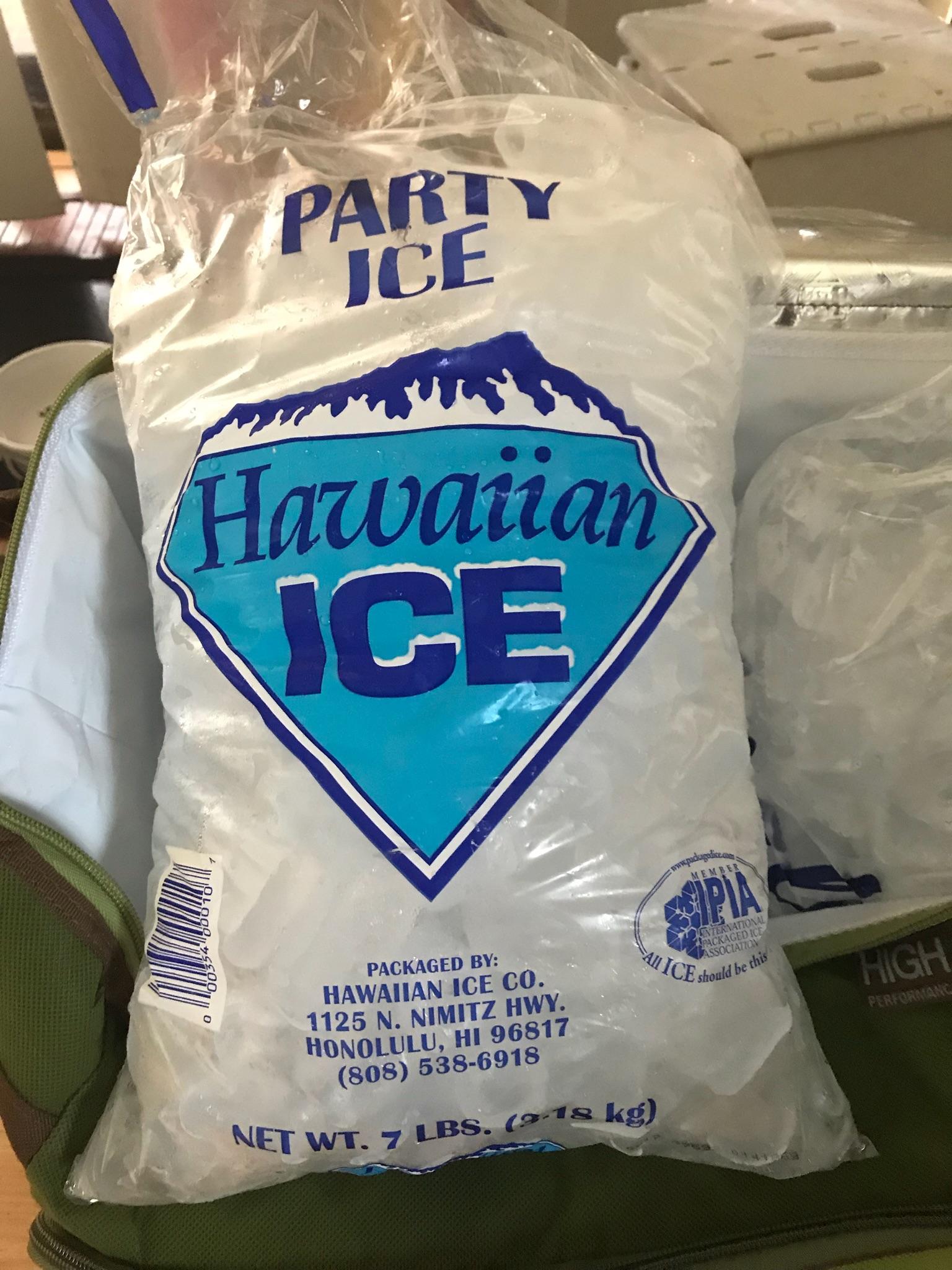 Hawaiian Ice Bag Of
