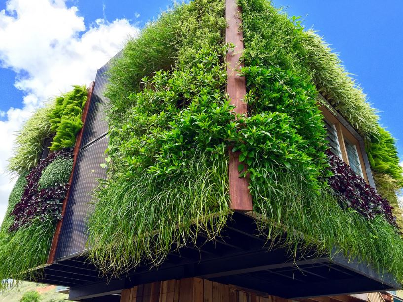 Also Known As Green Walls Living Are Designed Self Sufficient Gardens Within The Elaborate Channels That Carry Water To Plants