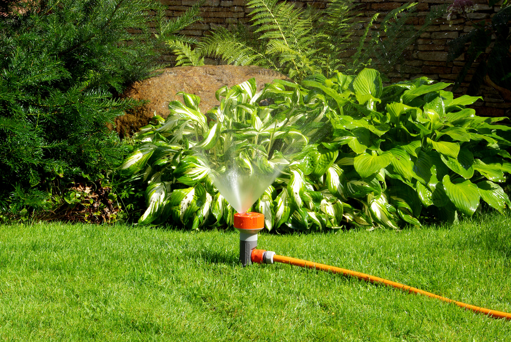 How Often Should You Water Your Landscaping Landscape Carolina Lancaster Nearsay
