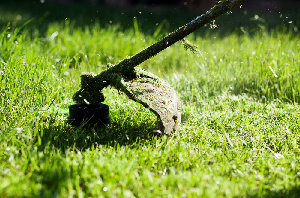 Lawn And Garden Supply : Pieces of lawn garden equipment you should tune up now