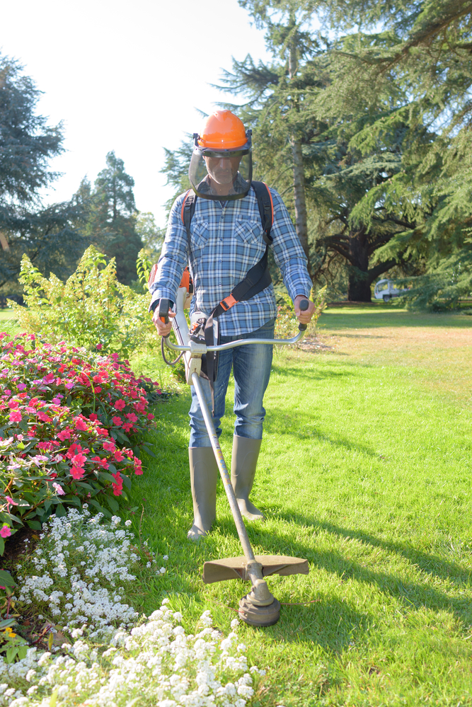 3 reasons you should hire a professional lawn care company for Professional garden maintenance