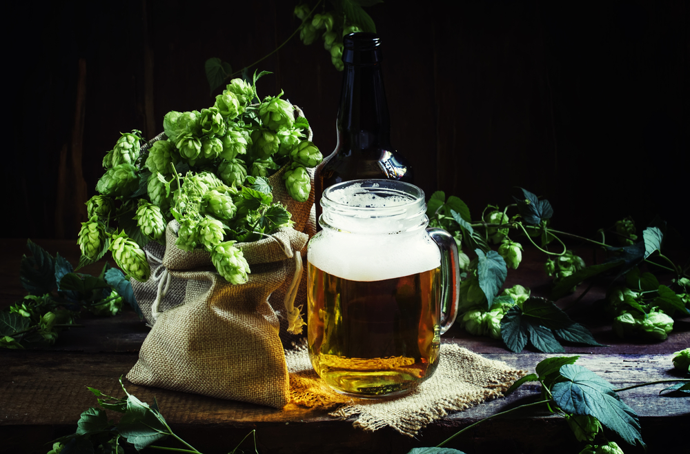 History of IPA's for Budding Beer Enthusiasts