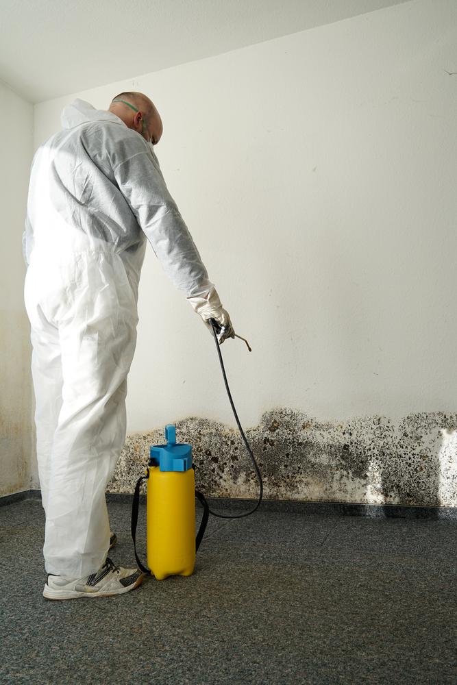 Mold Remediation Lincoln NE