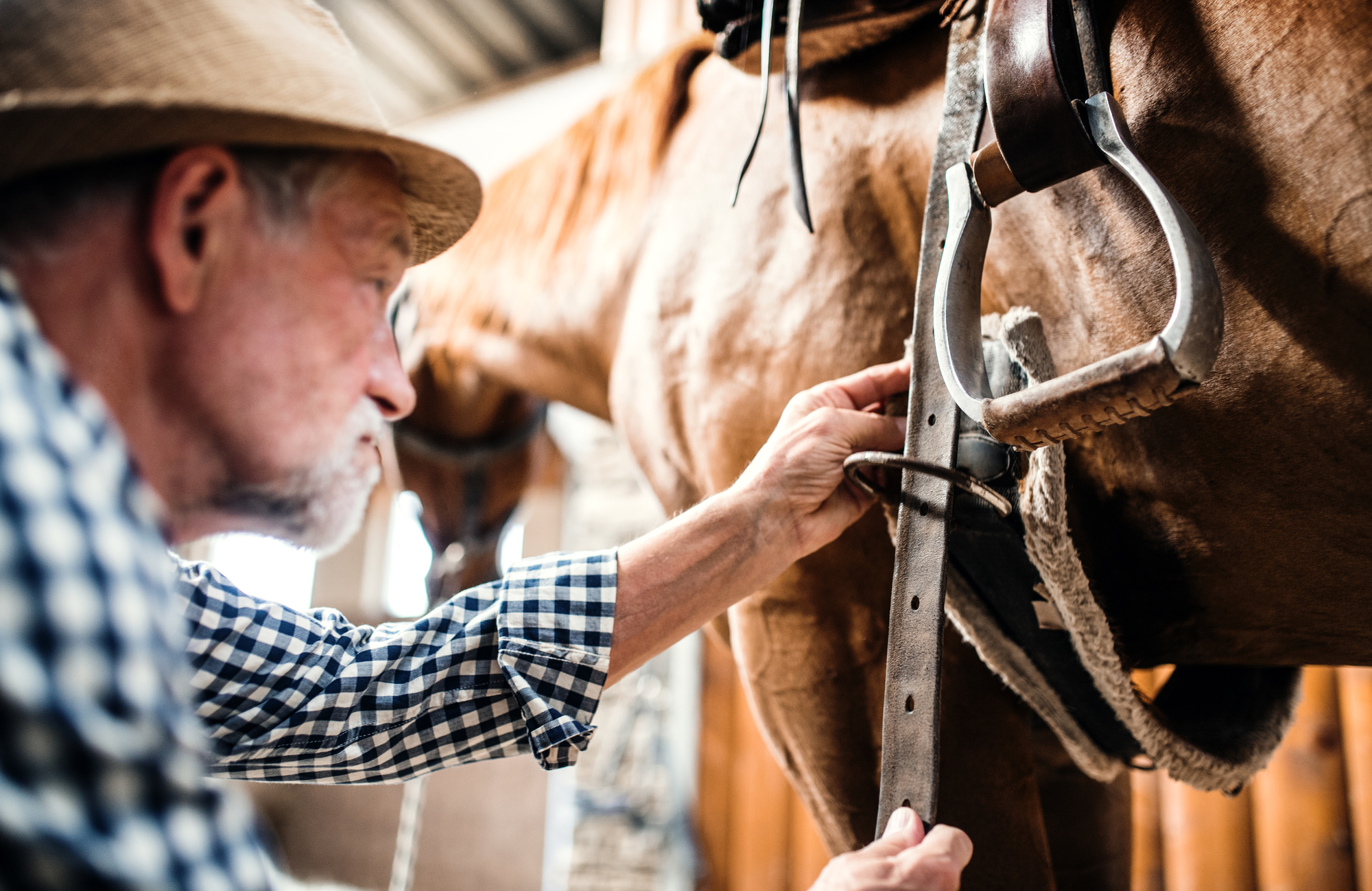 Your Guide to Consignment Saddles - Liberty Western