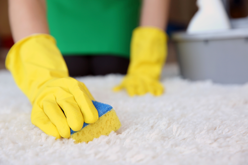 Saint-Louis-Missouri-residential-cleaning-service