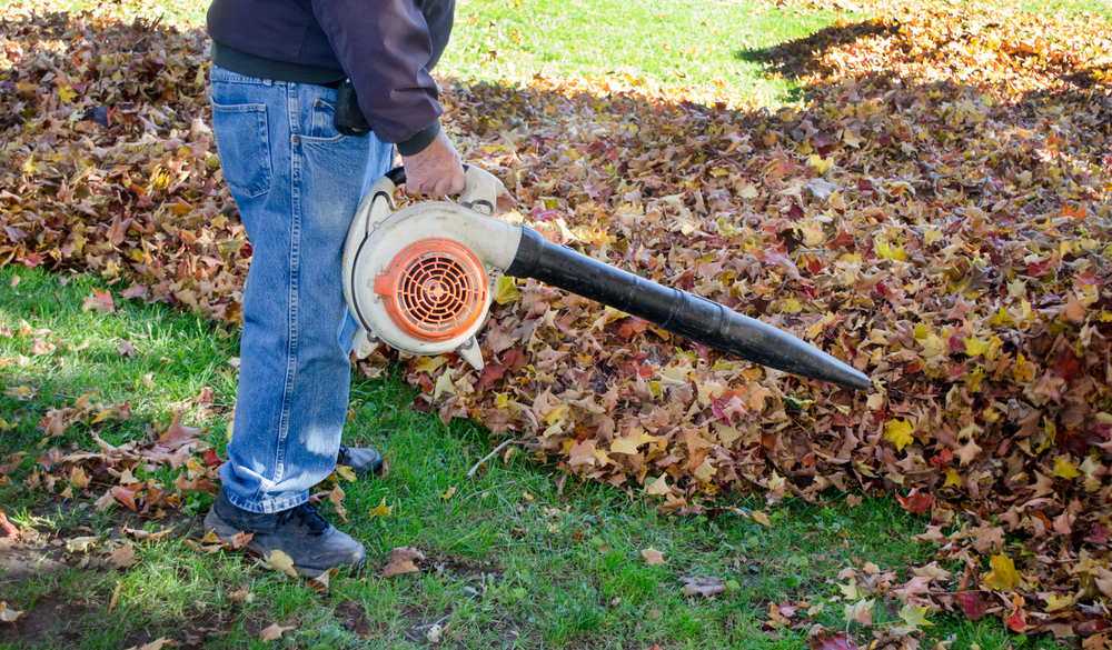 Septic Tank Blower : Plumber shares septic tasks to tackle before winter