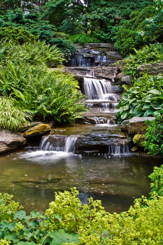 Backyard Ideas: The Top 3 Trends in Aquatic Gardens ... on Waterfall Ideas For Garden id=32751