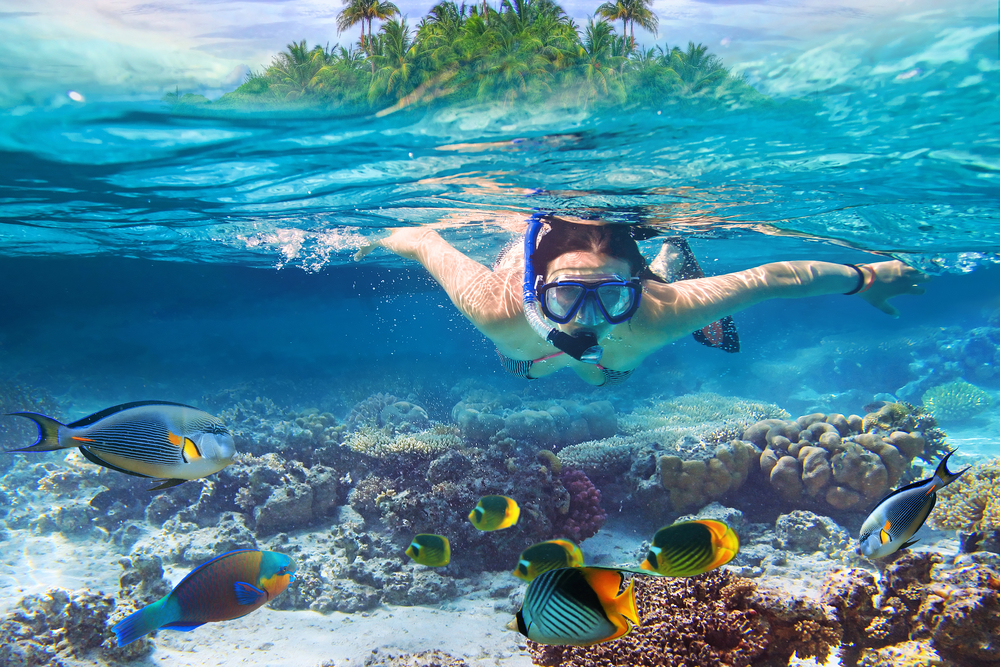 3 Reasons to Take a Snorkeling Adventure Around the Mokulua