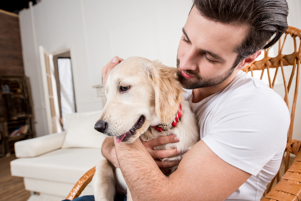 the effective use of animals in therapy Abstract many studies utilizing dogs, cats, birds, fish, and robotic simulations of animals have tried to ascertain the health benefits of pet ownership or animal-assisted therapy in the elderly.