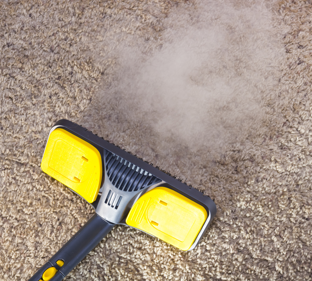 and spills on carpeting create an ideal environment for mold and mildew to flourish as both need moisture to multiply routine carpet cleaning keeps