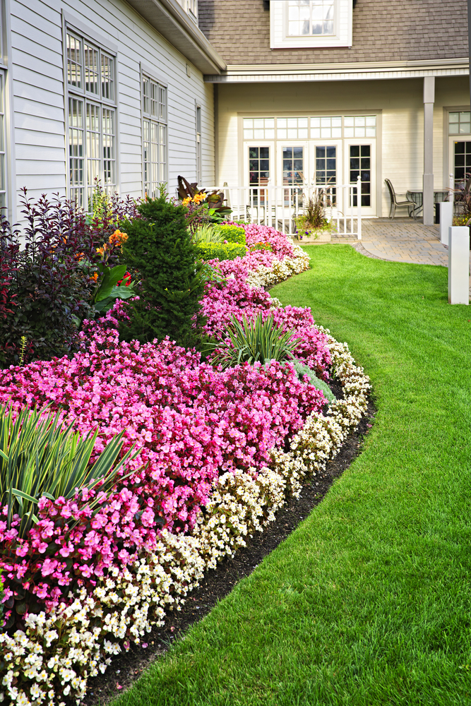 Landscape Design Nothing Creates A Welcoming Atmosphere Quite Like An  Assortment Of Beautiful Flowering Plants.