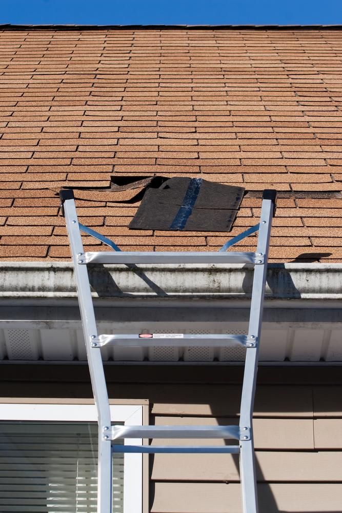 Burnsville, MN roofing contractor