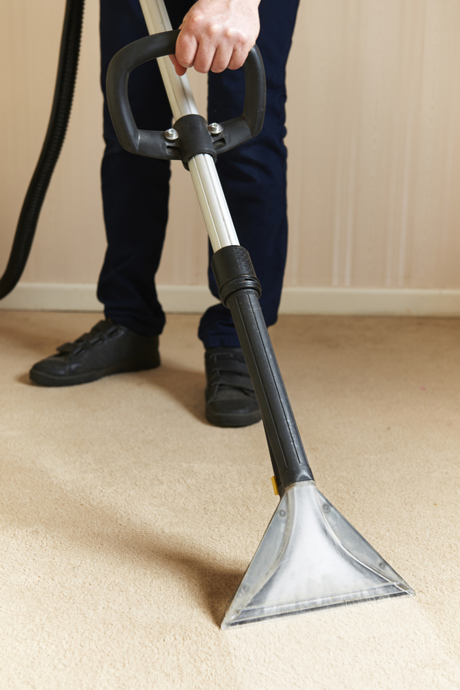 3 reasons to hire professional carpet cleaners busters carpet some stains and odors can penetrate the fibers of your carpet making them difficult to remove by yourself professional carpet cleaners are equipped with solutioingenieria Image collections