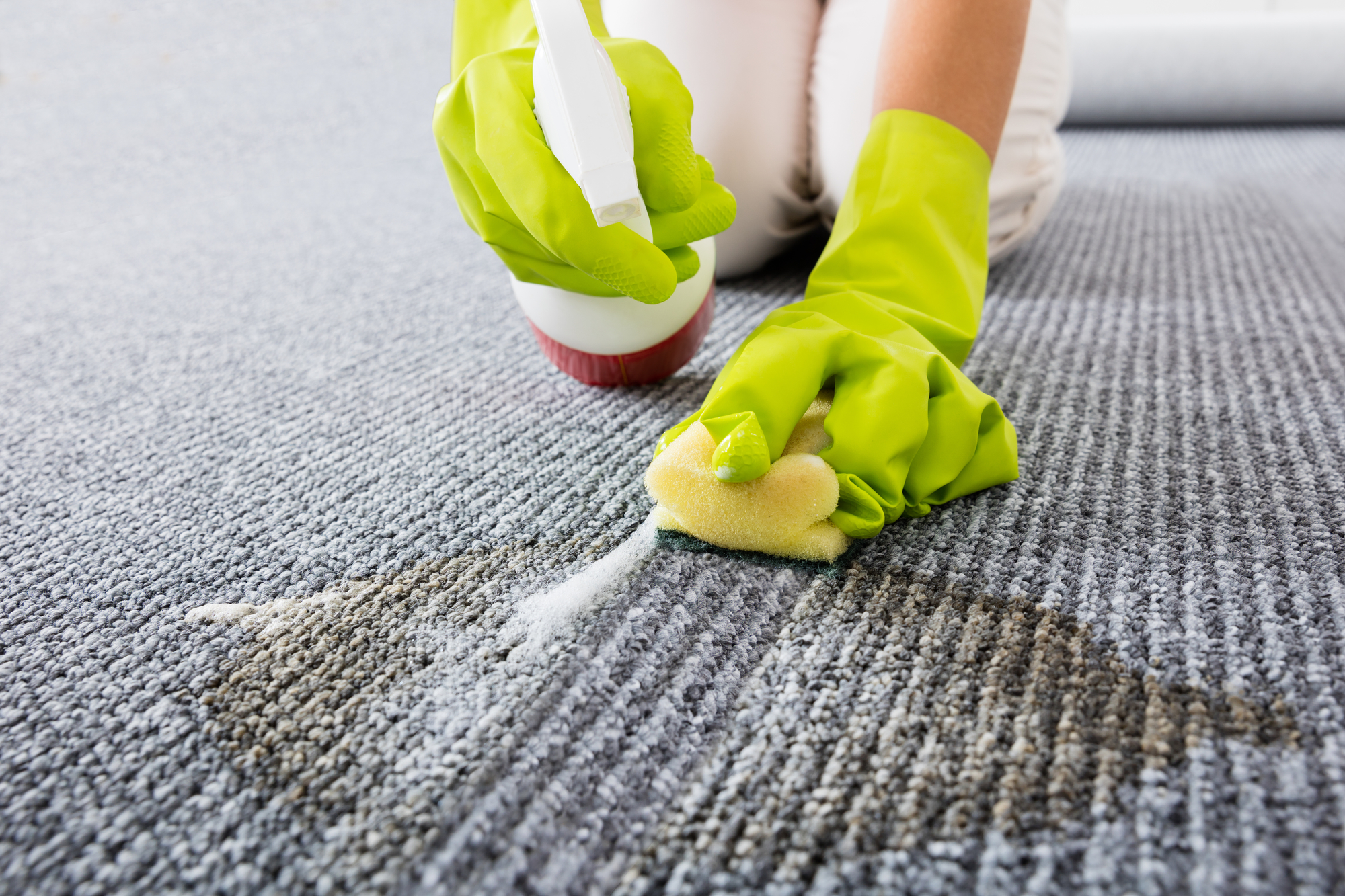 Urine Smell Out Of Carpet Human