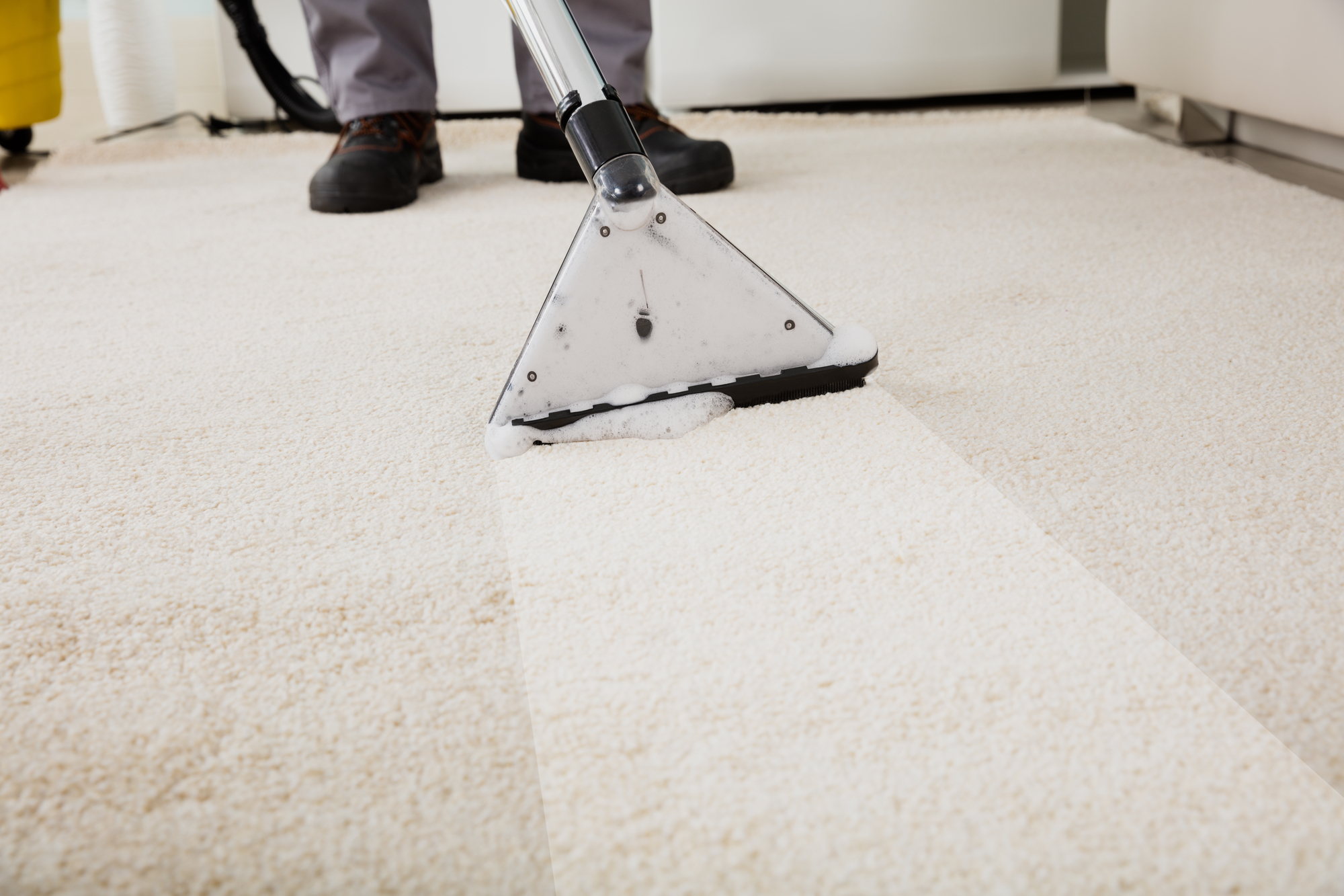 3 carpet cleaning methods to keep your home feeling fresh tri state steamer ashland nearsay - Often clean carpets keep best state ...