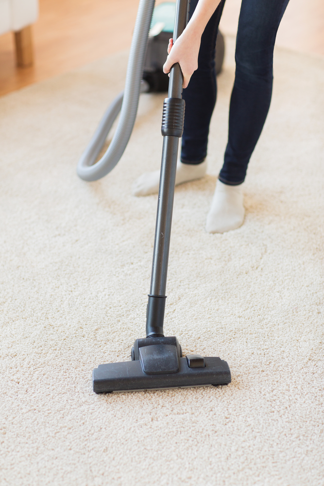 carpet cleaning company pearl city hi