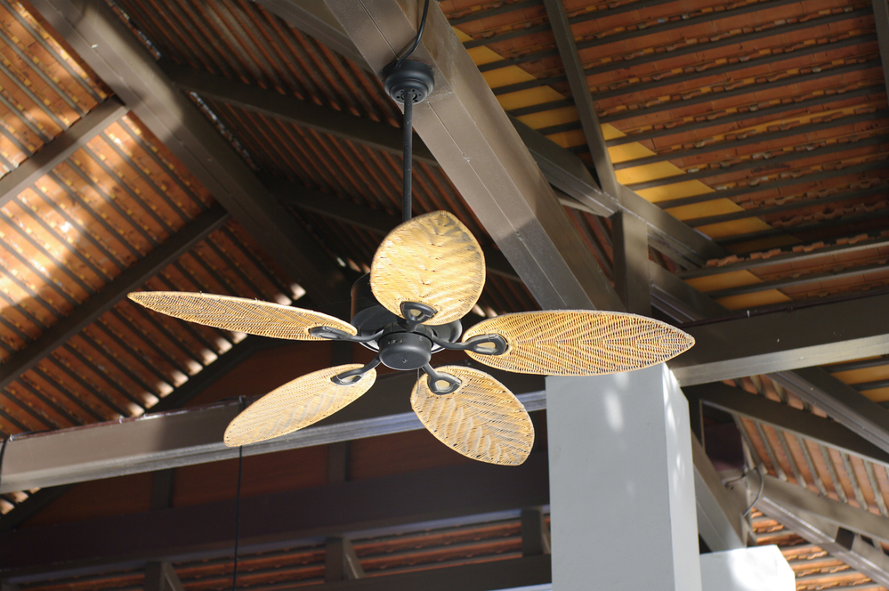 Home Maintenance While The Functional Ceiling Fan