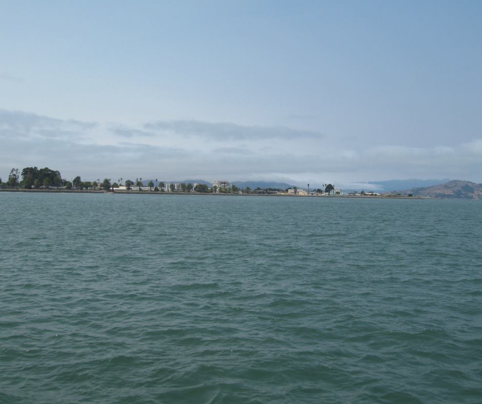 Yacht charter service offers pacific ocean ash scatterings for Berkeley fishing charter