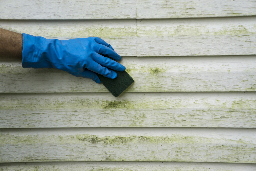 How To Clean Vinyl Siding K P Lamarco Amp Associates Llc