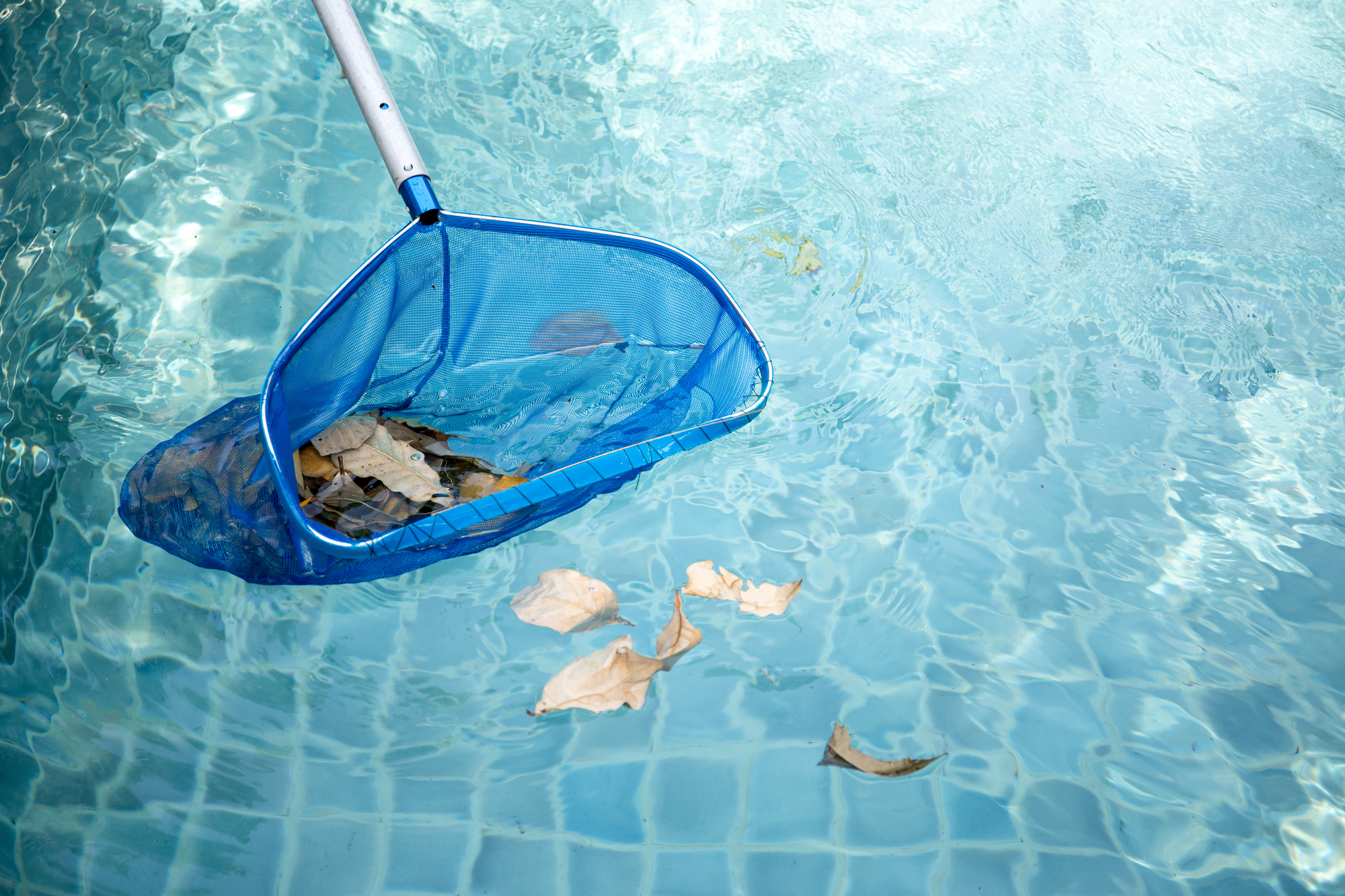 7 Steps to Winterizing Your Pool - A-1 Electric Motor ...