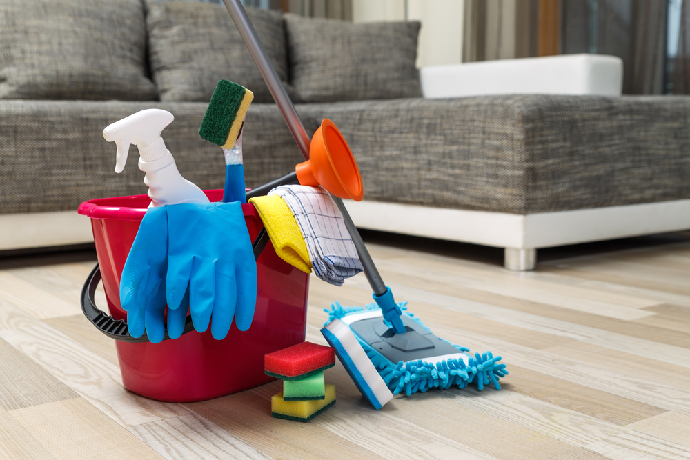Ensure Your Home Is Getting A Deep Clean House Cleaners Are Trained And Experienced In The Art Of Cleaning They Have High Standards Pay Close