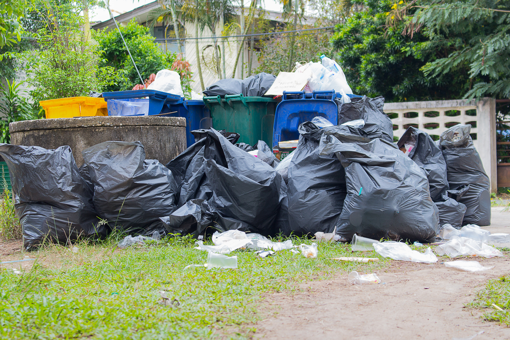 The importance of hiring a professional for junk debris for Furniture removal seattle