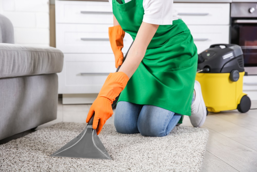 5 Carpet Cleaning Tips To Remove Pet Urine Chem Dry Of