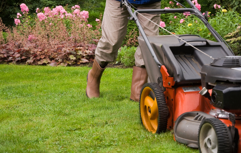 electric-lawn-mower-l-and-r-equipment-inc
