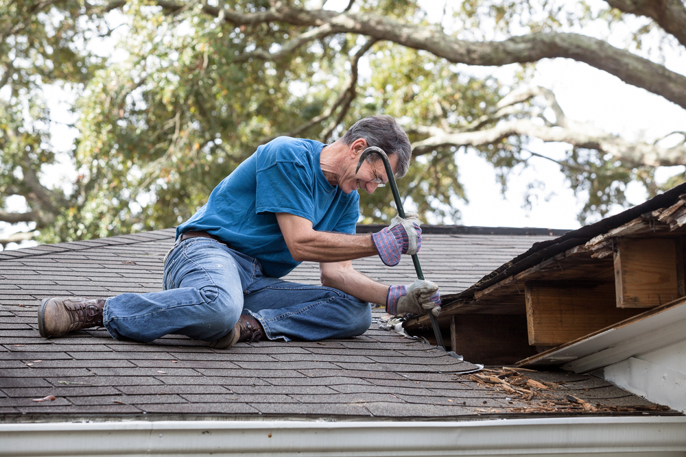 3 Key Signs You Need Roof Repairs - Northern Kentucky Roofing ...
