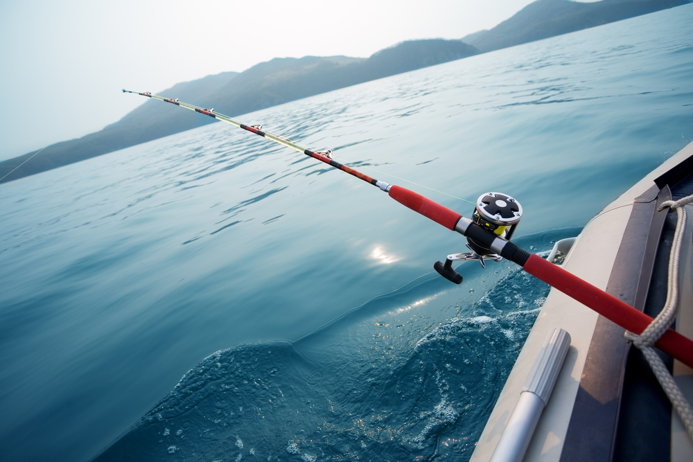 The best tropical fish to catch in spring tropic fish for Fishing supplies honolulu