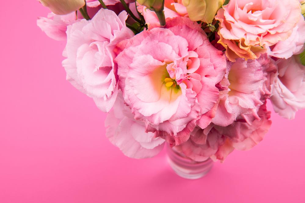 The deeper meanings of 5 beautiful flowers wilson flower shoppe flowers mightylinksfo
