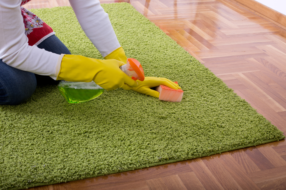Carpet Cleaning Eco Friendly