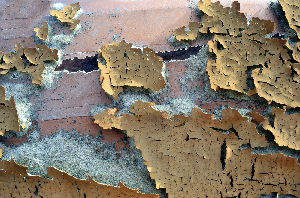 Top 5 Lead Paint Removal Poisoning Faqs Ohana